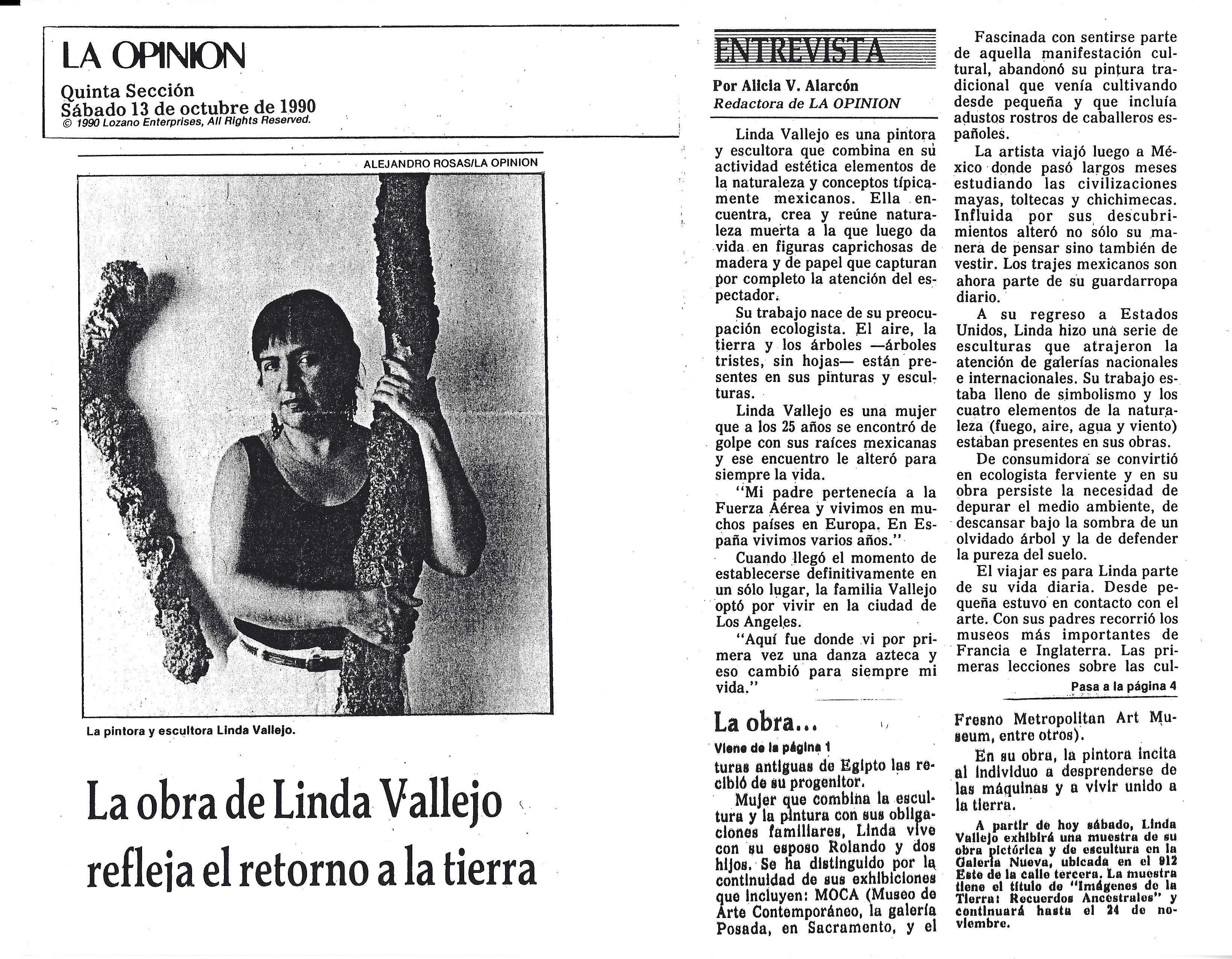 Curriculum Vitae | Linda Vallejo
